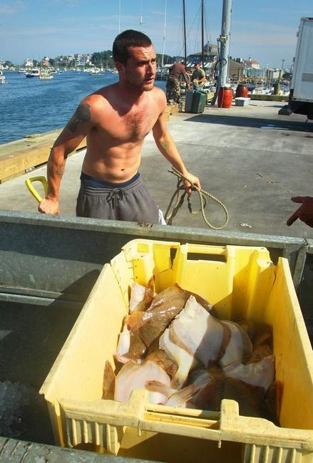 Some fish brought in by The New Wave commercial fishing boat and its crew, which includes Dan Woods of Hull. |   Gary Higgins/The Patriot Ledger