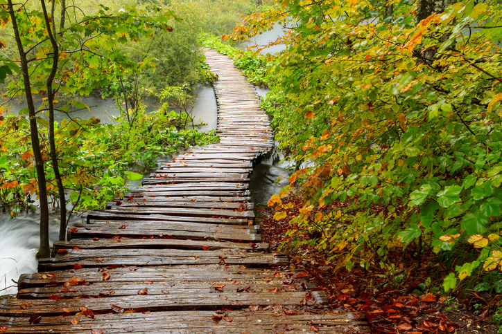 Bridge path -495480420.jpg