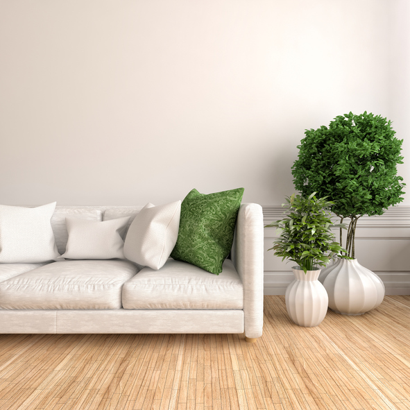 Couch -490043494.jpg