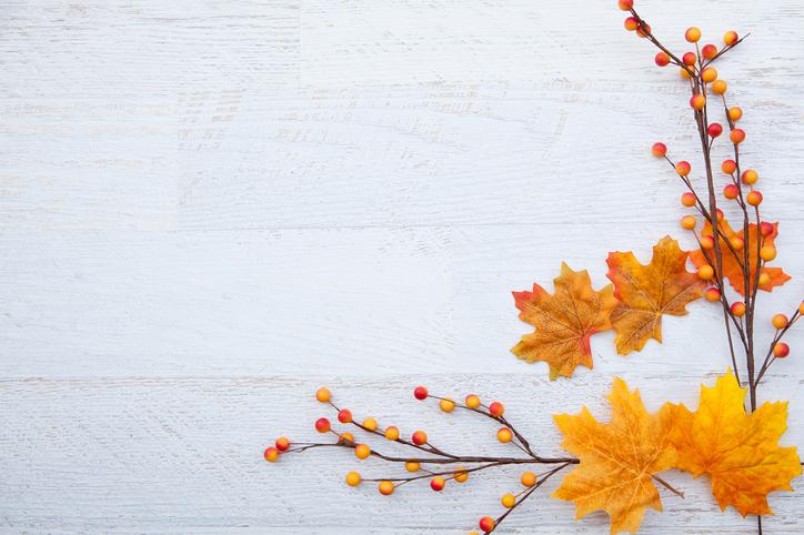 Fall leaves message 485966566.jpg