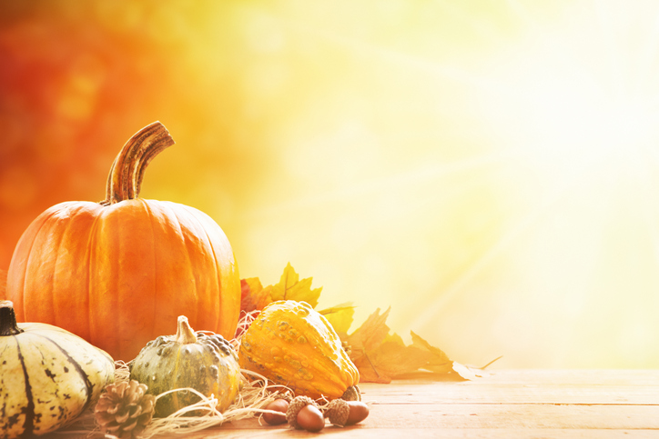 Thanksgiving 175517043.jpg