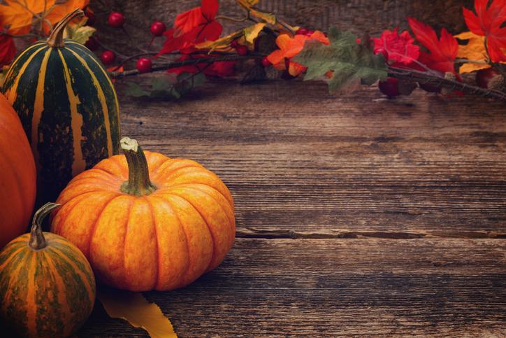 Thanksgiving 611171416.jpg