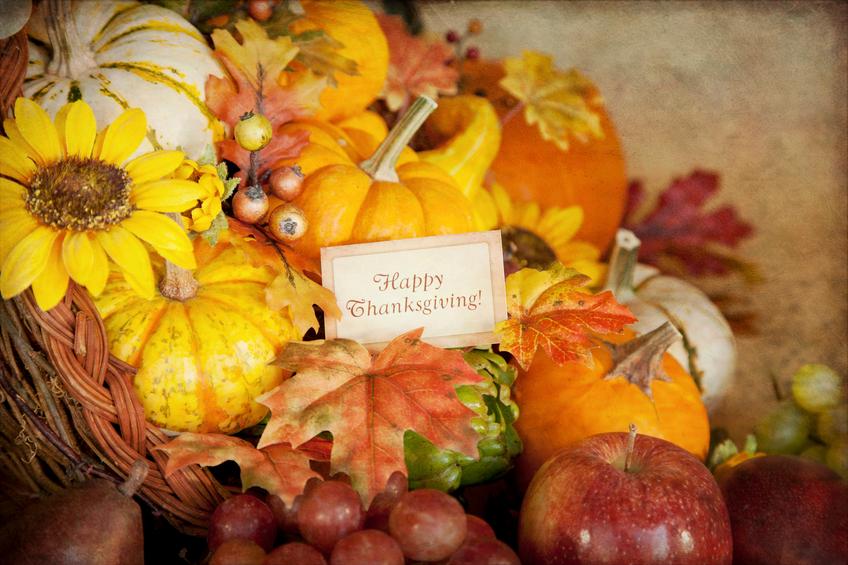Thanksgiving food 108091319_SMALL.jpg