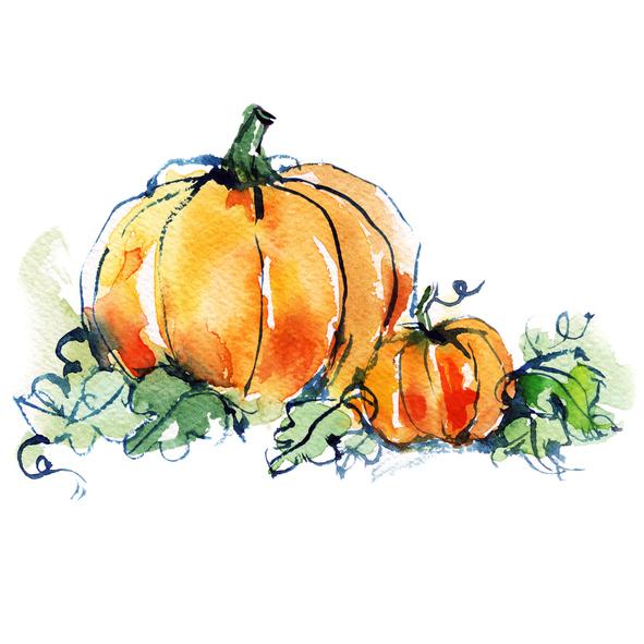 Thanksgiving Pumpkin Watercolor 487941658.jpg