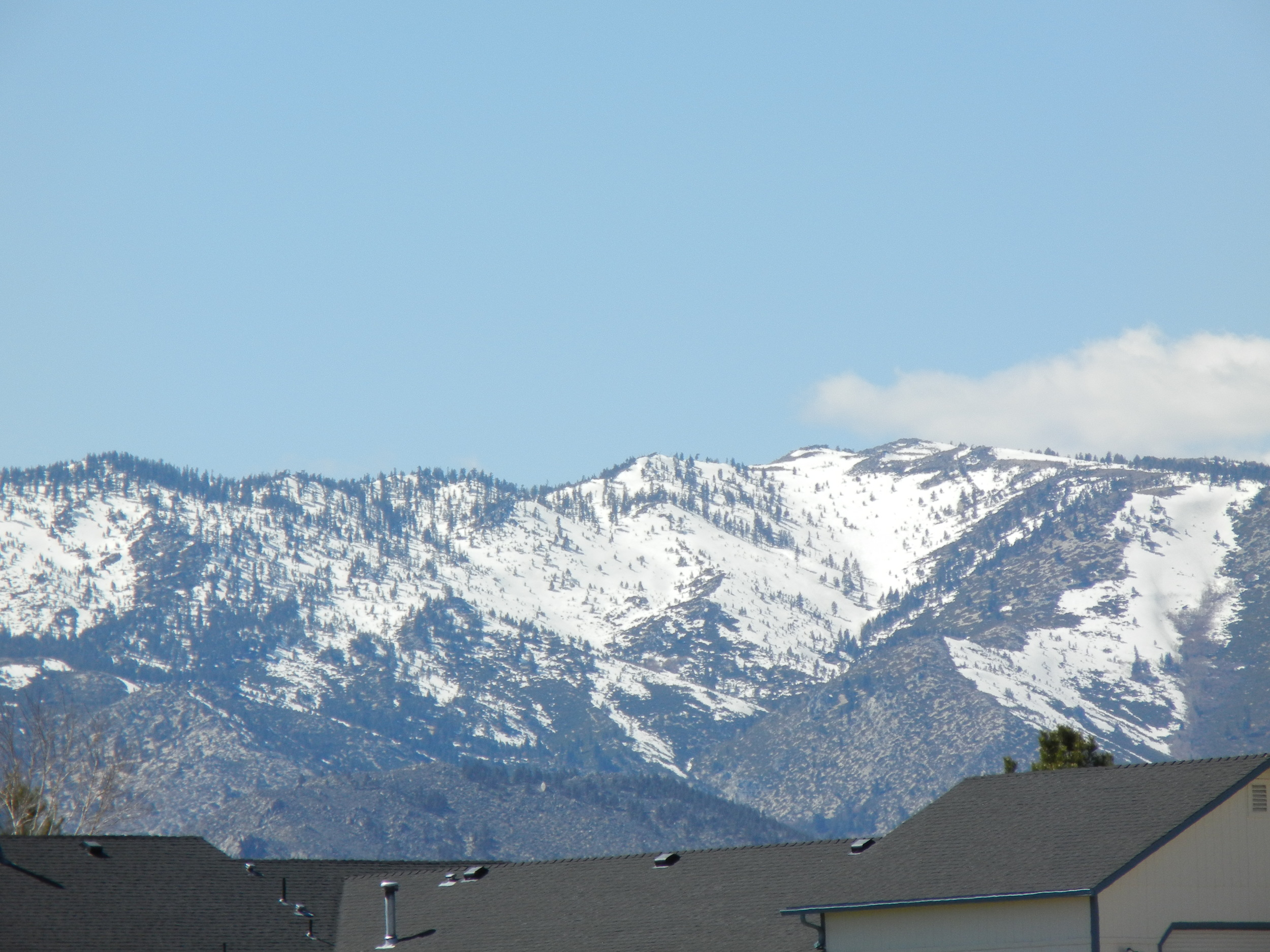 View out my studio window in Minden.