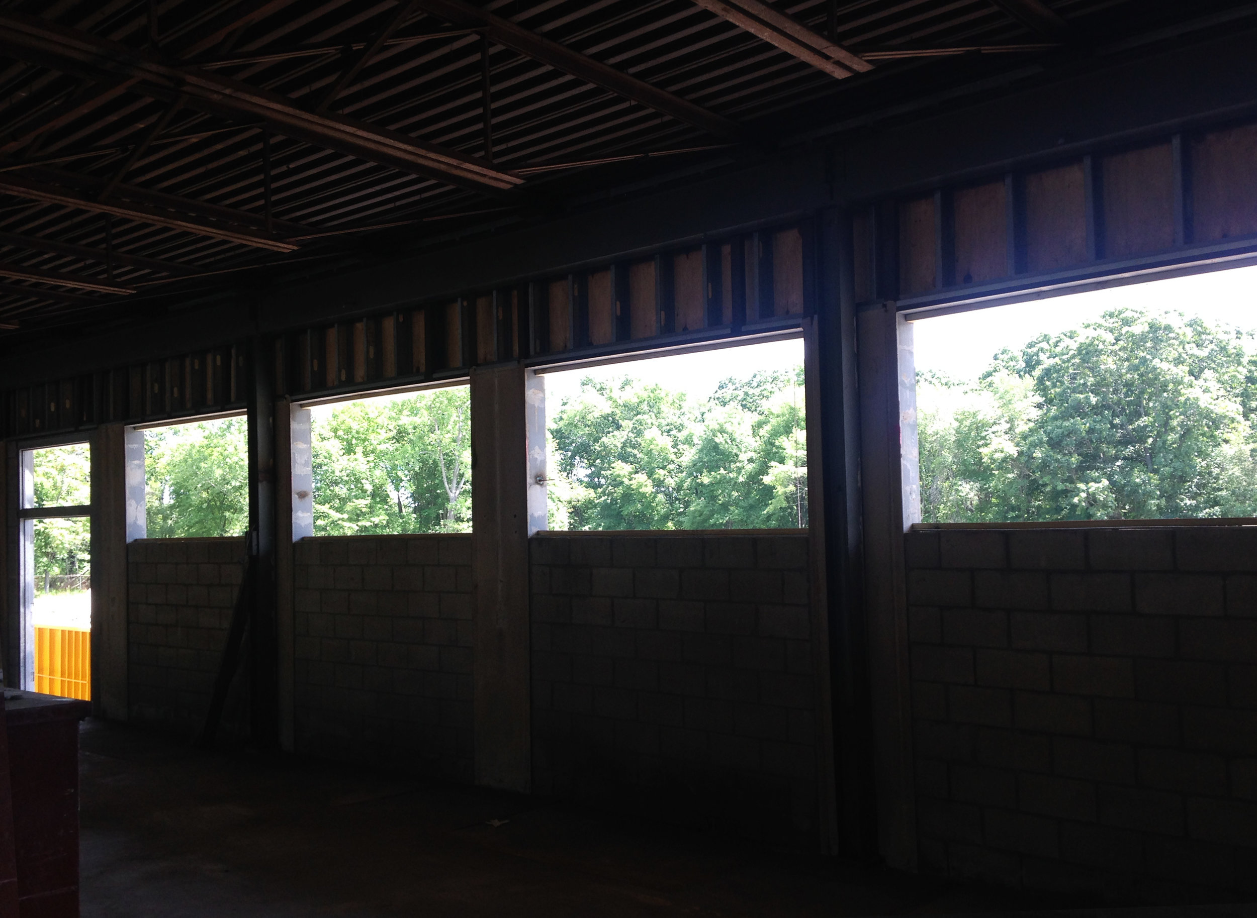 Views out onto the tree canopies from the interior, before windows were installed