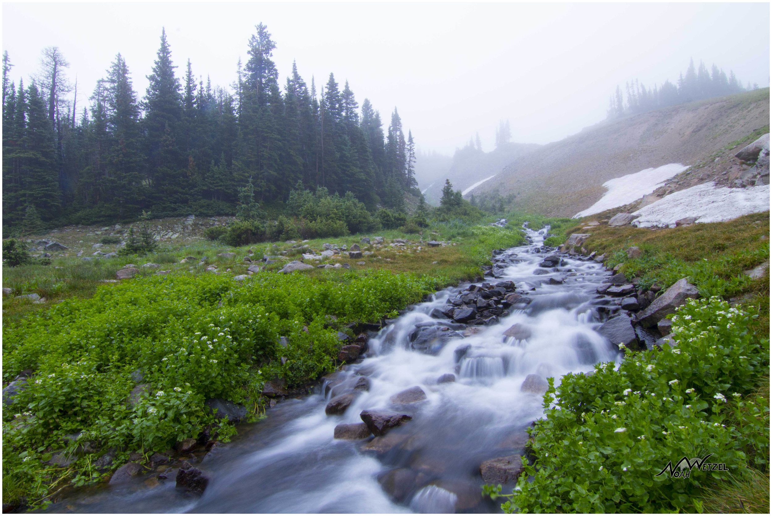 Foggy Streams in the Rawah Wilderness, CO