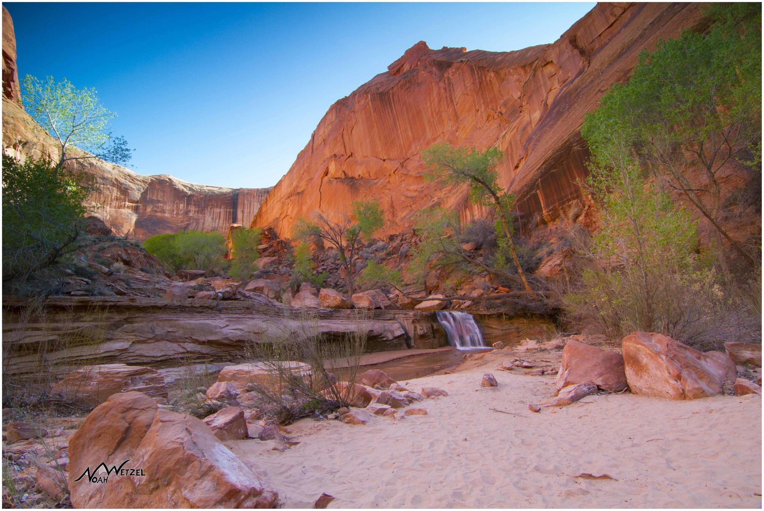 Waterfall Oasis. Coyote Gulch. Escalante, Utah