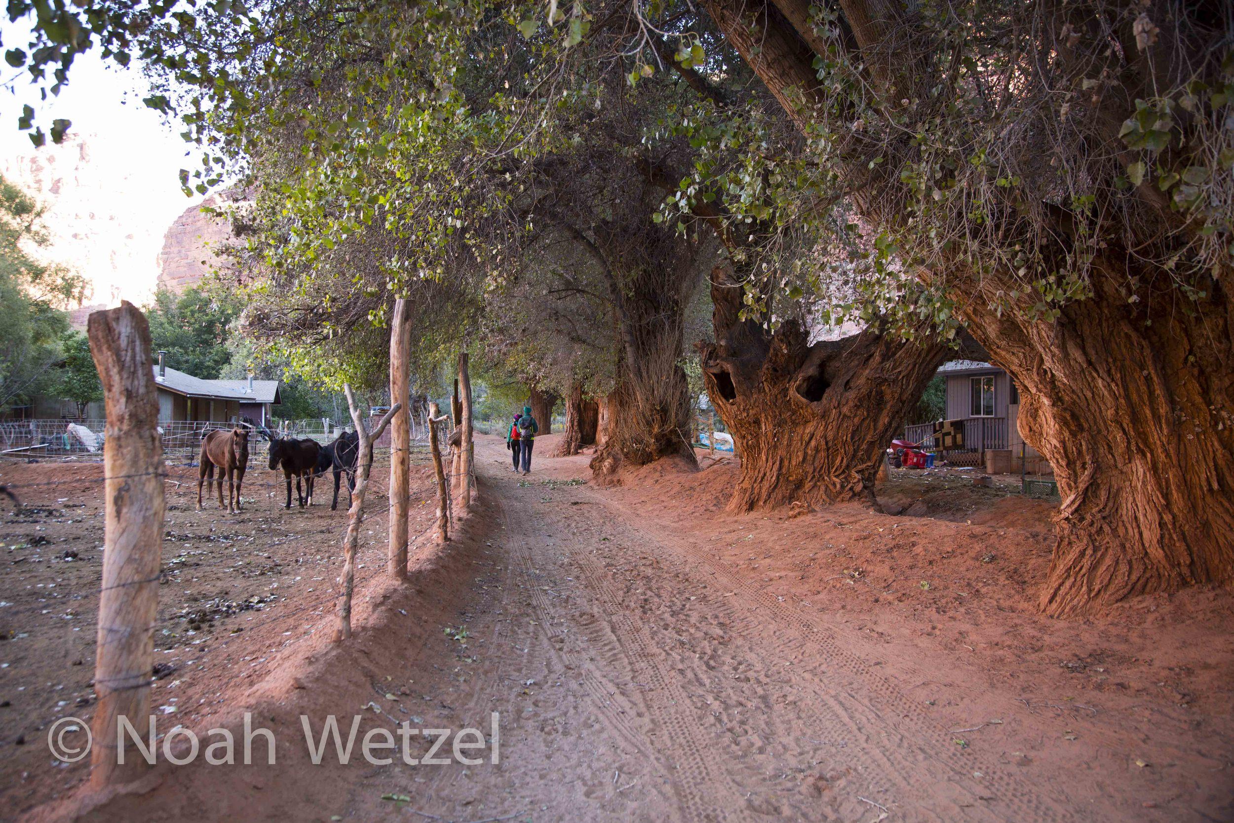 Entering the village of Supai, Arizona