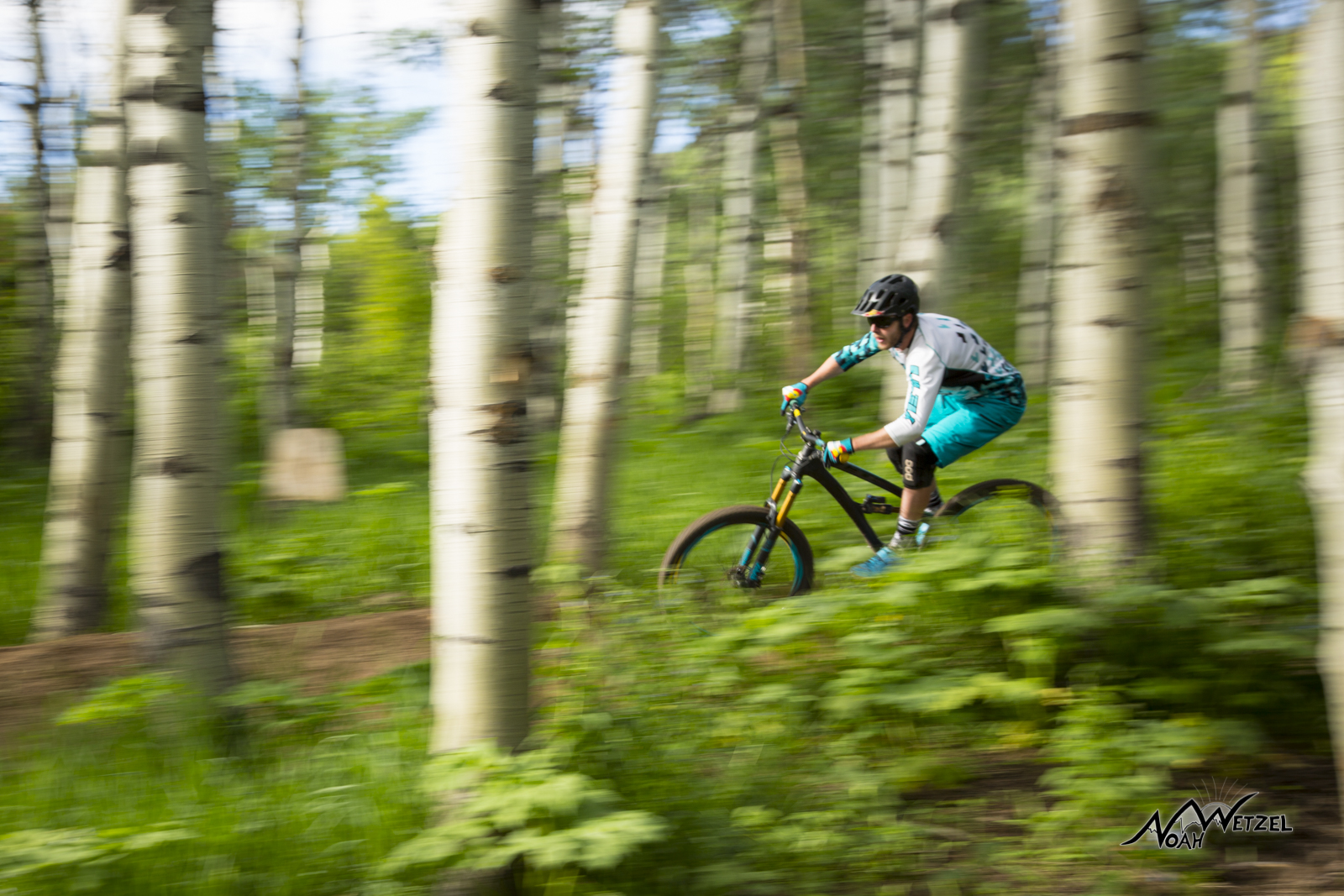 Justin Reiter cruising through the Aspens on NPR on Emerald Mtn.