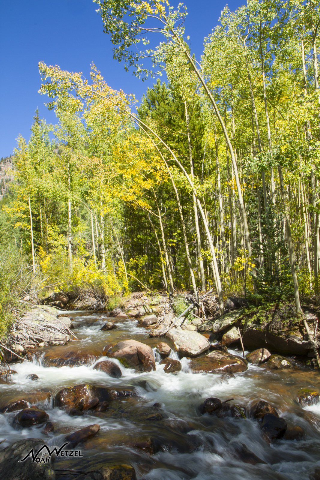 Trail 056. High Uintas Wilderness. Utah