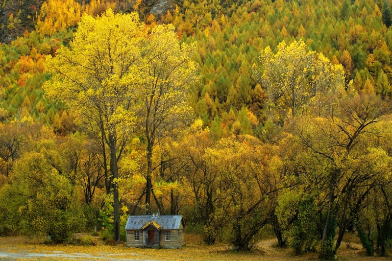 Police_Hut_with_autumn_colours.jpg