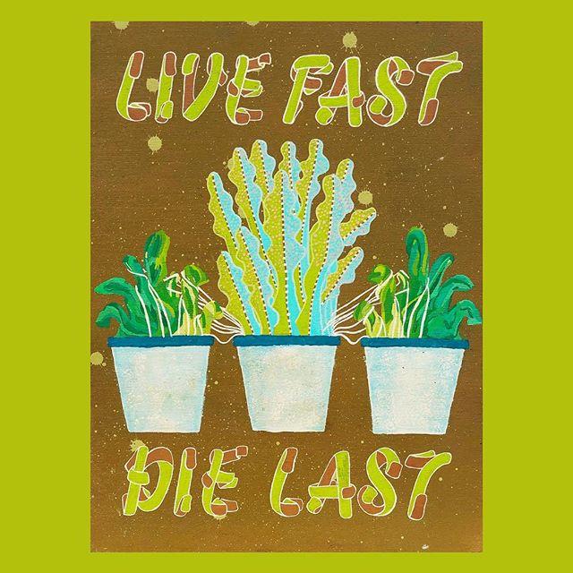 Live fast, die last. . . . . #seattleartist #pnwart #illustration #drawing #art #artist #illustrator #artoftheday #instalike #instagood #instafollow #karlmaxx #artoftheday