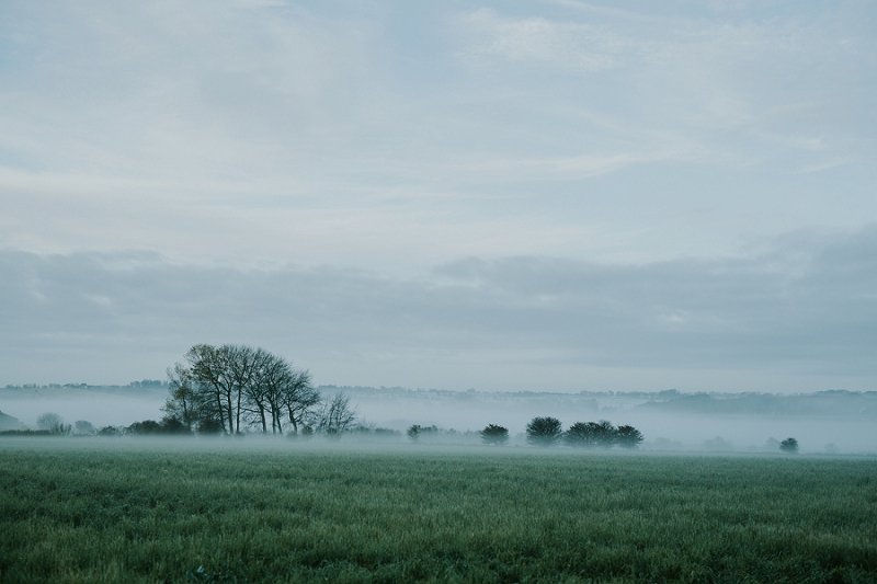 misty-morning-sigridsminde_6856.jpg