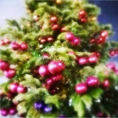 asdmag-peirs-atkinson-christmas-tree1.jpg