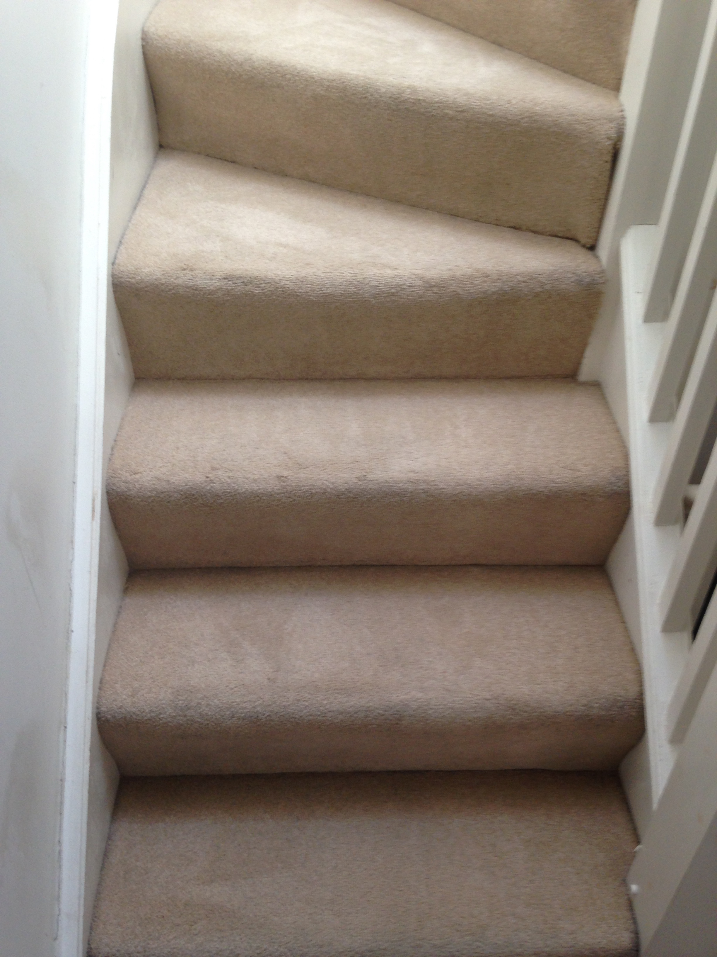 fresh and clean steps