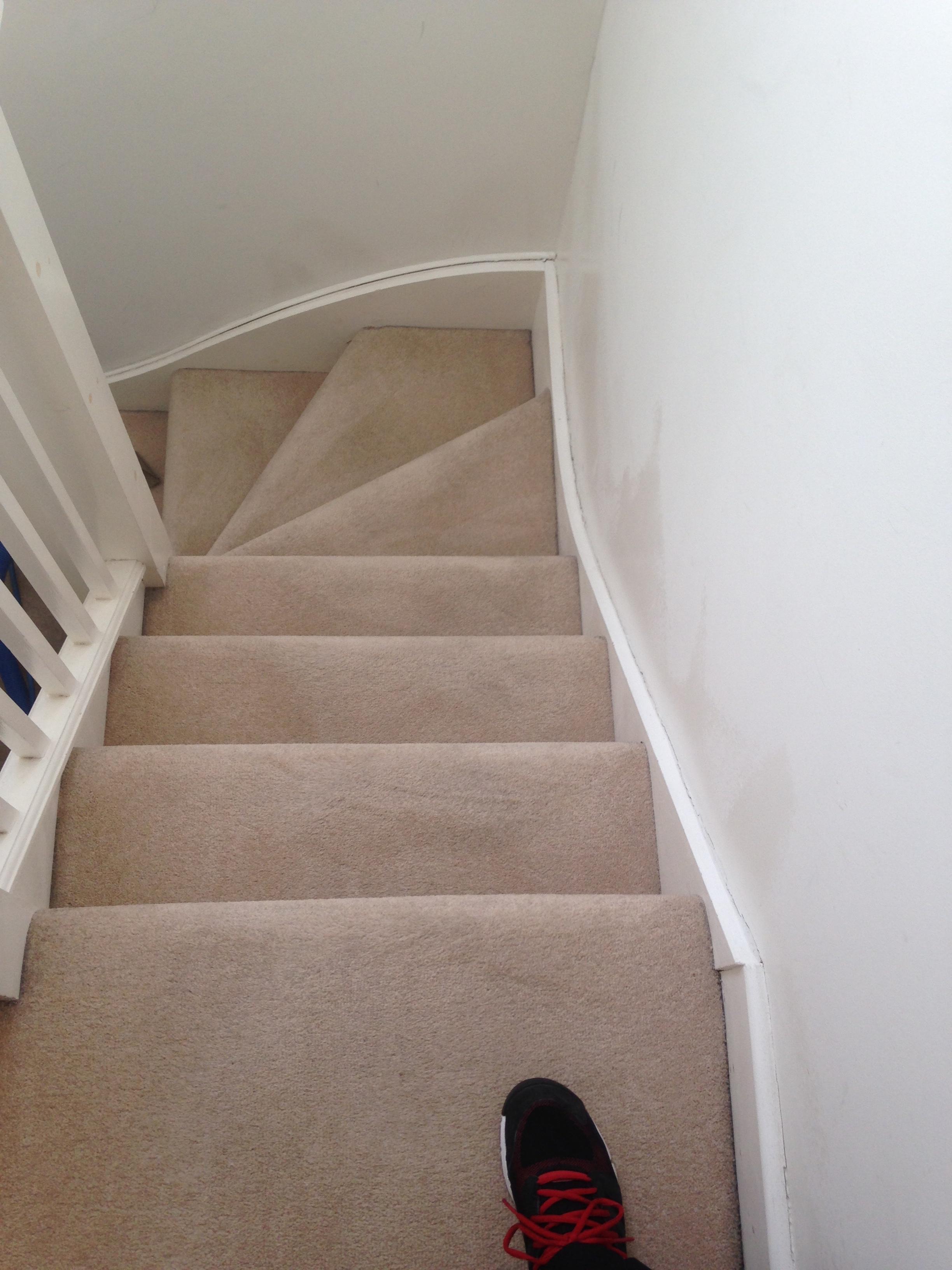 freshly steam cleaned steps