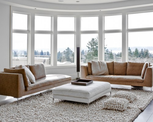 living room carpet sofa.jpeg