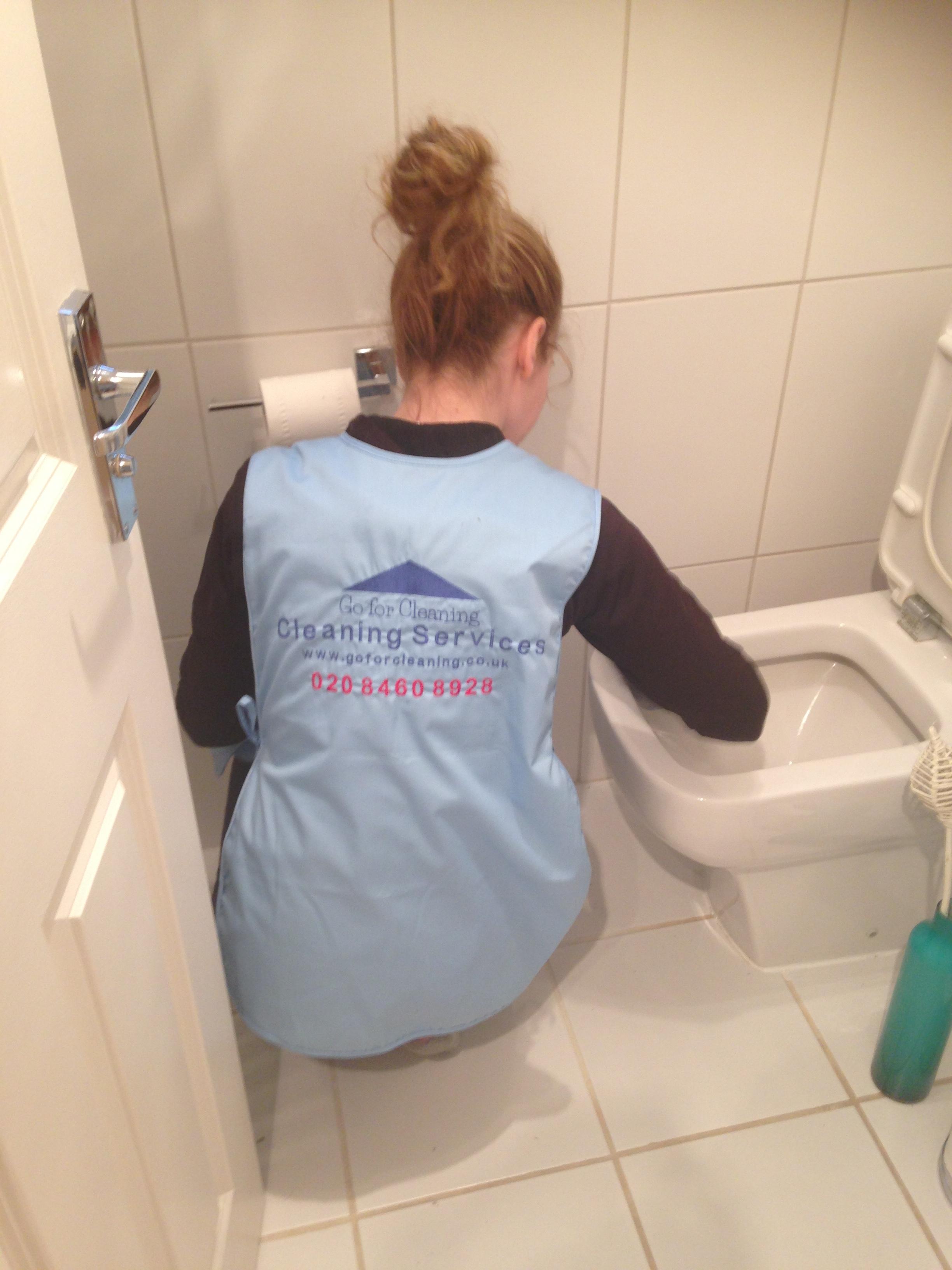 toilet bowl cleaner.JPG