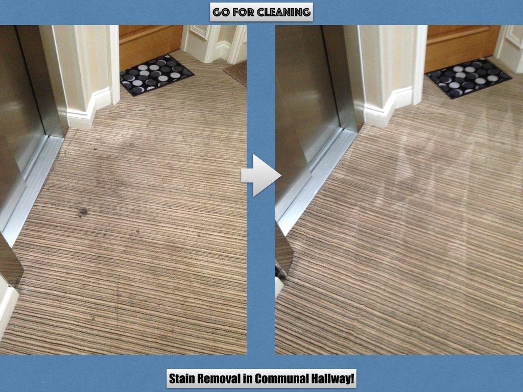 hallway carpet clean.jpeg