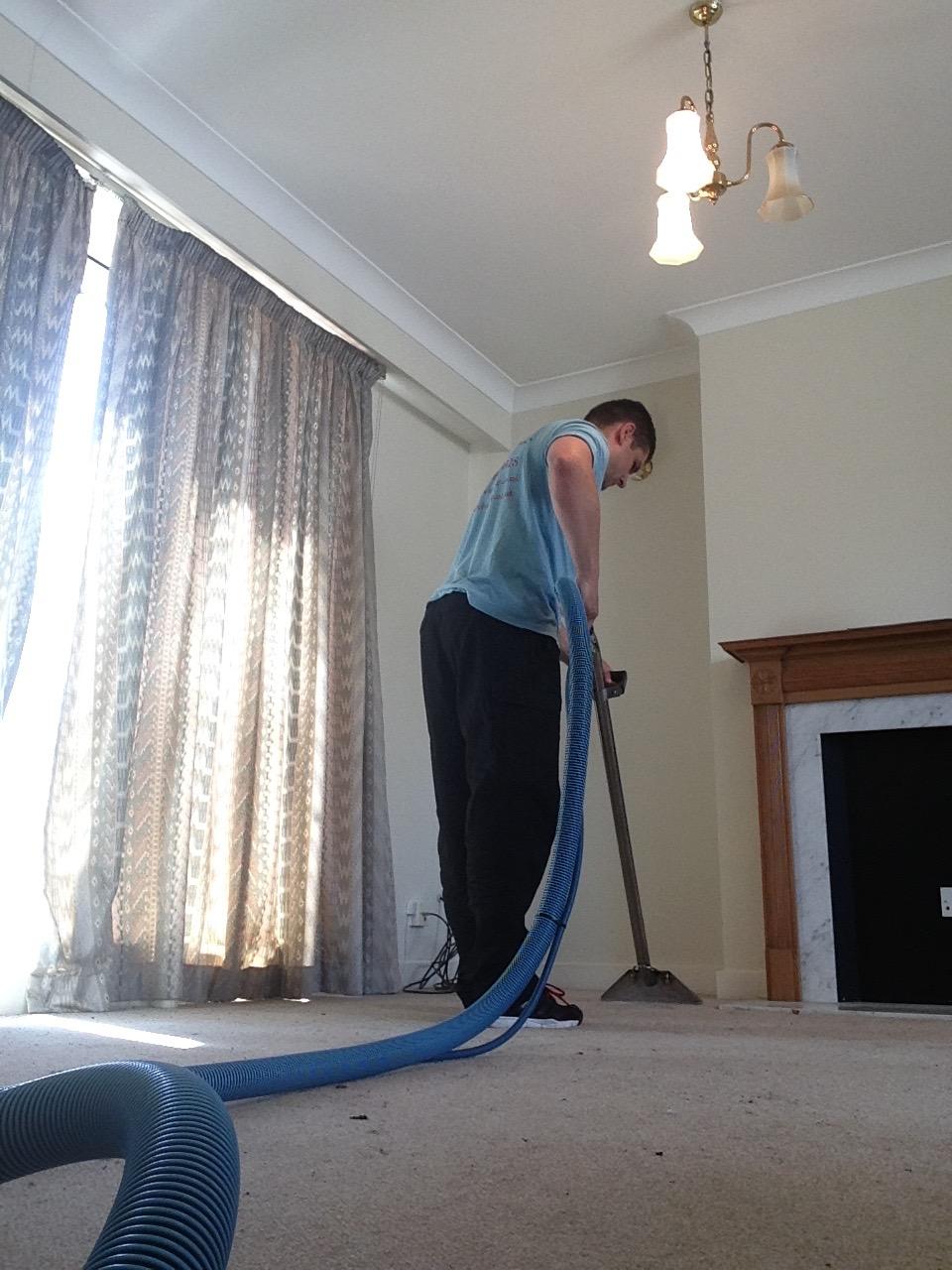 the carpet cleaner.jpg