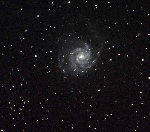Pinwheel Galaxy (M 101). (Photo credit: Richard Johnson)