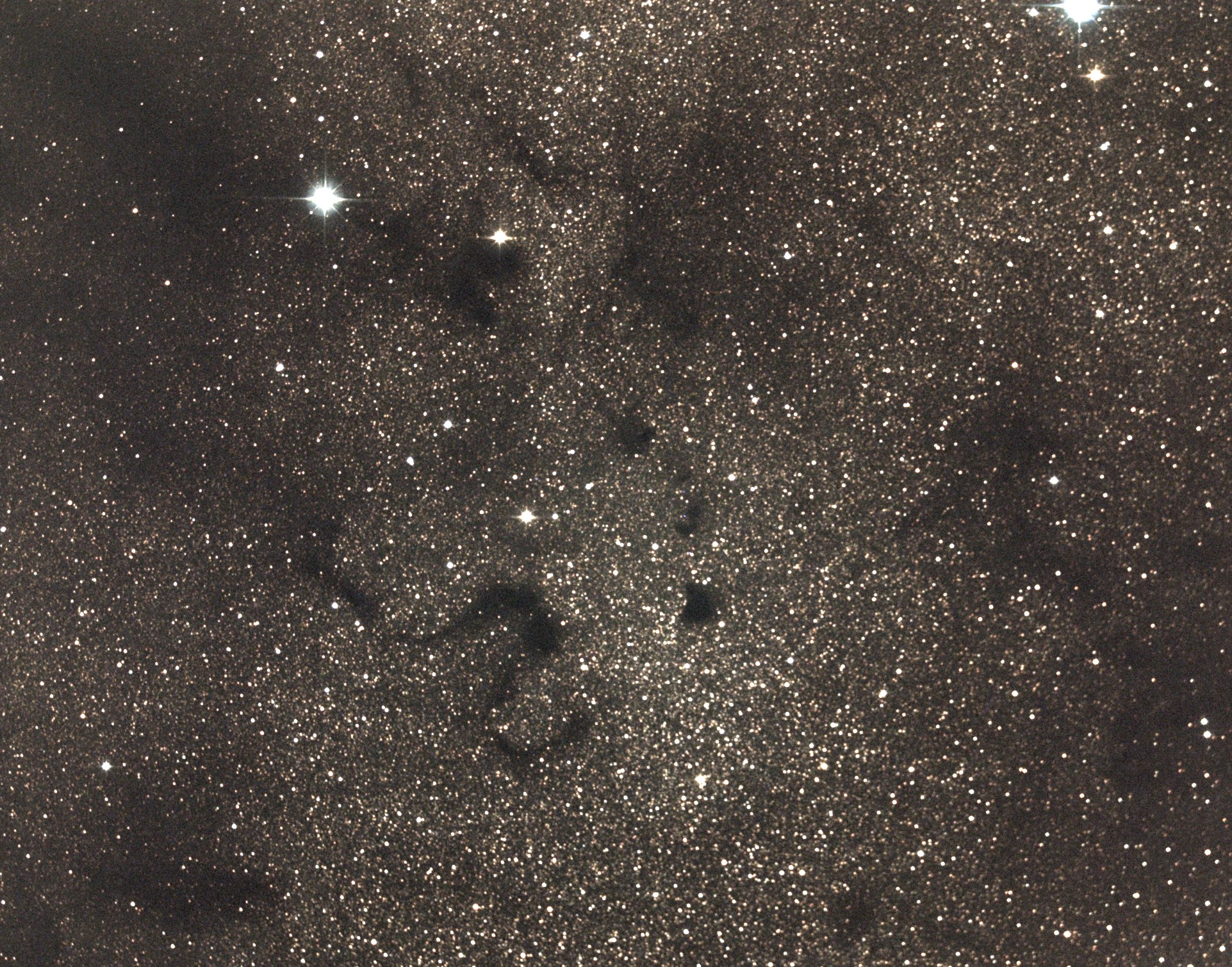 Barnard 72, The Snake Nebula. Photo credit: Richard Johnson.