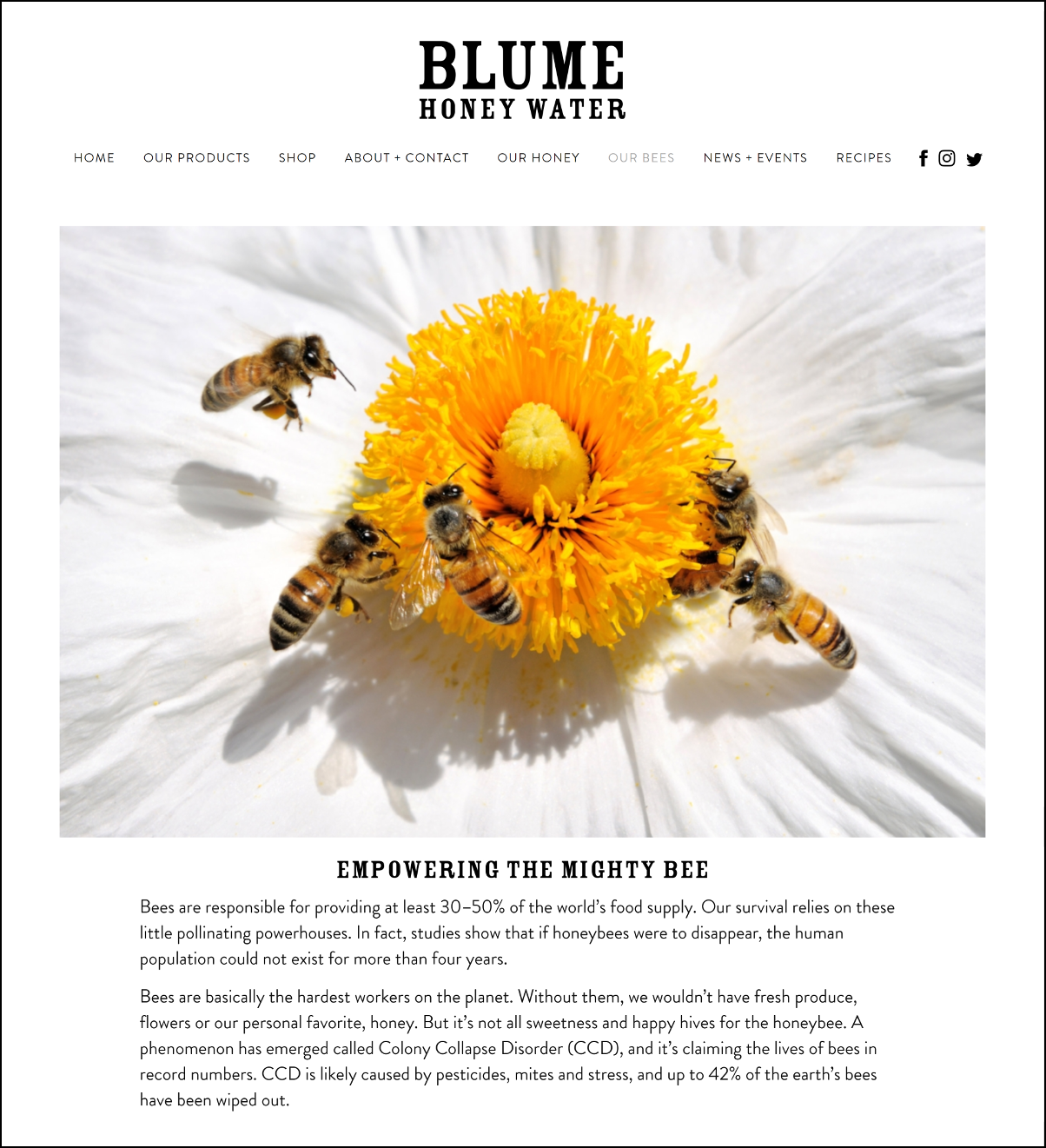 Blume_Screen_shot_bees_2_pxl_border.png