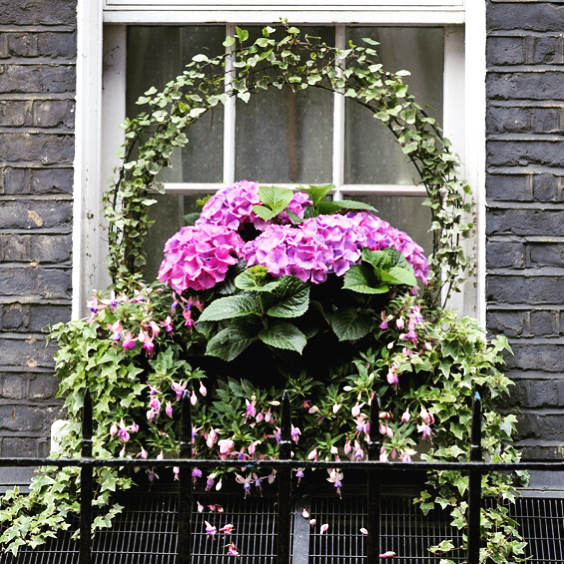 Bee_Kind_Garden_Window.jpg