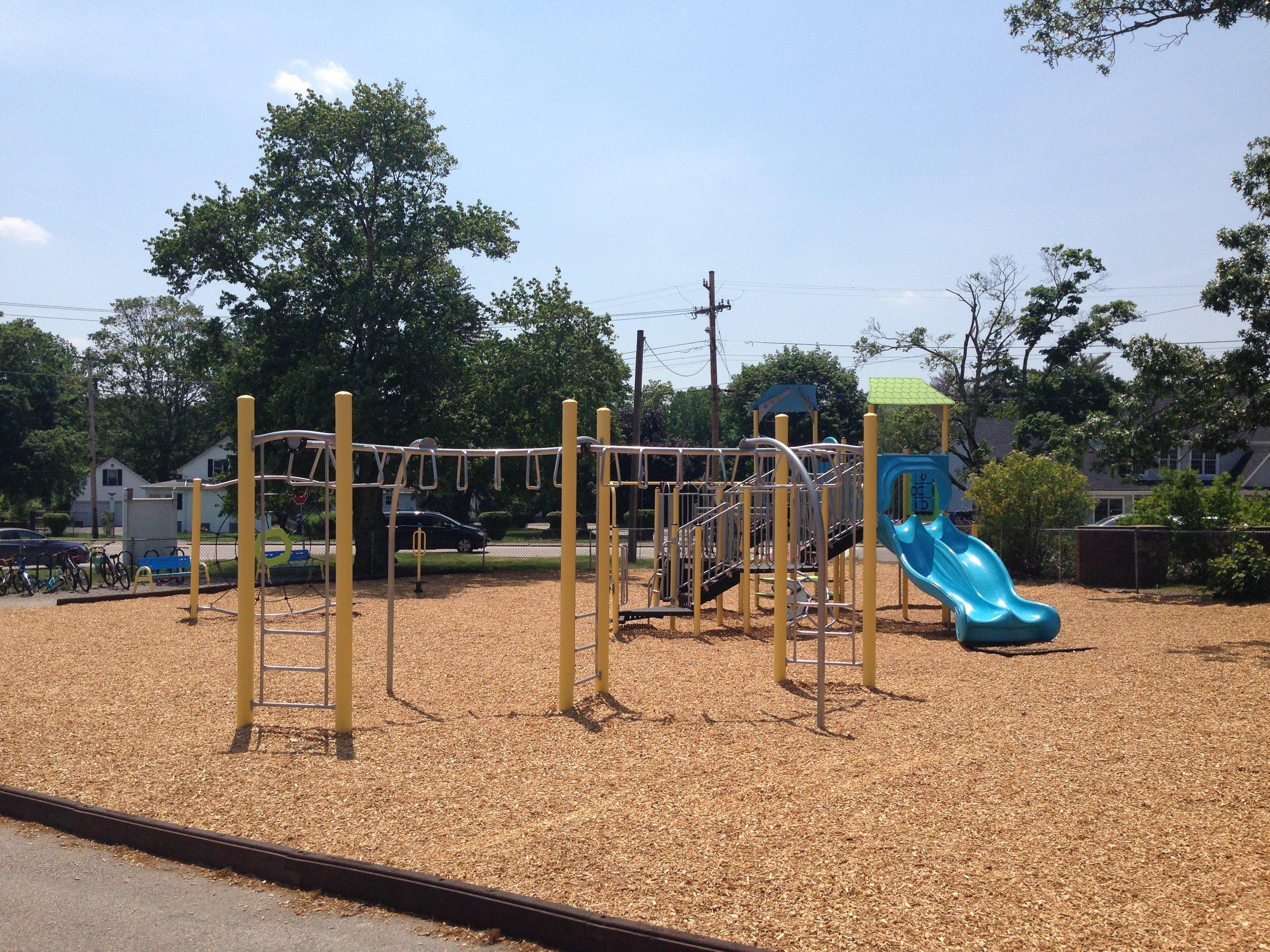 School Playground with wood mulch playground surfacing.jpg
