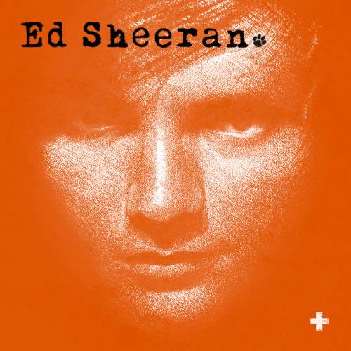 Ed Sheeran / Studio