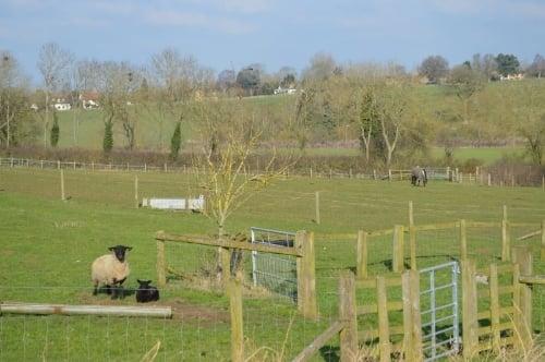 Spring floristry workshop, Rectory Farm, Bucks