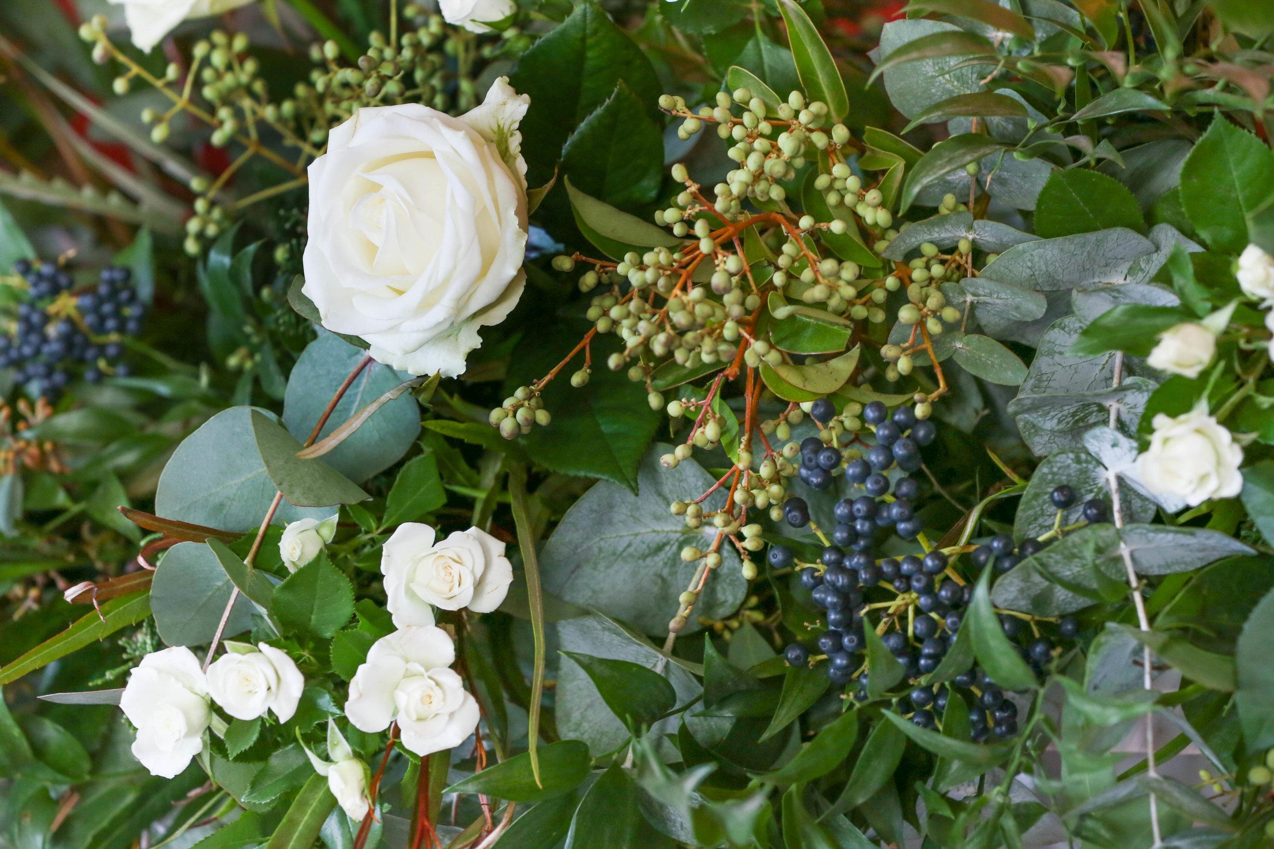 Winter foliage & berries