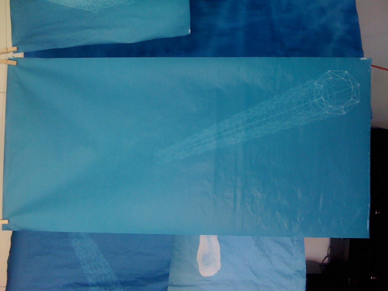 Cyanotypes drying after developing them. As they dry, they darken and the images reveal a stronger contrast in tones.