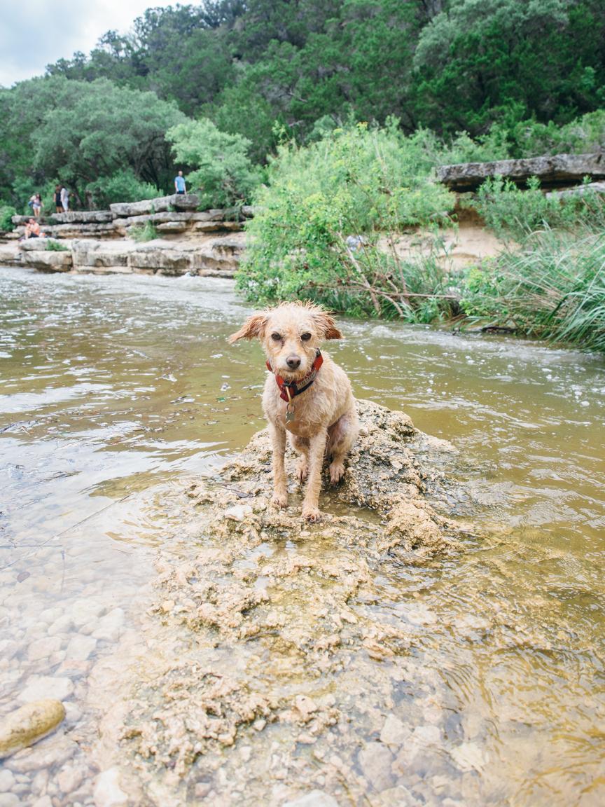 bull creek austin texas atx america yall pawlowski greenbelt 6
