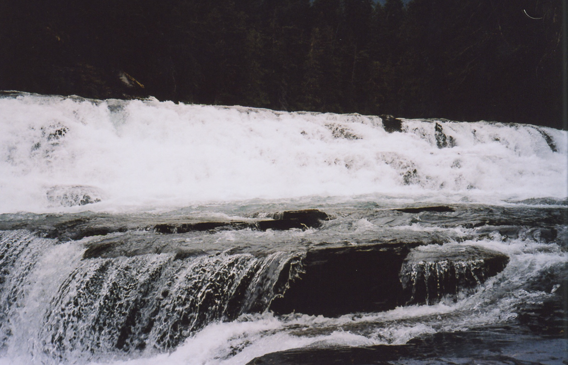 kodak portra 160 film 35mm texas montana america yall pawlowski olympus 13