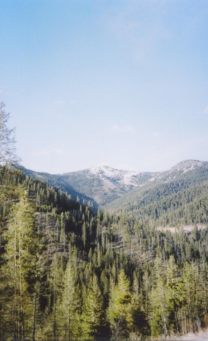 kodak portra 160 film 35mm texas montana america yall pawlowski olympus 14