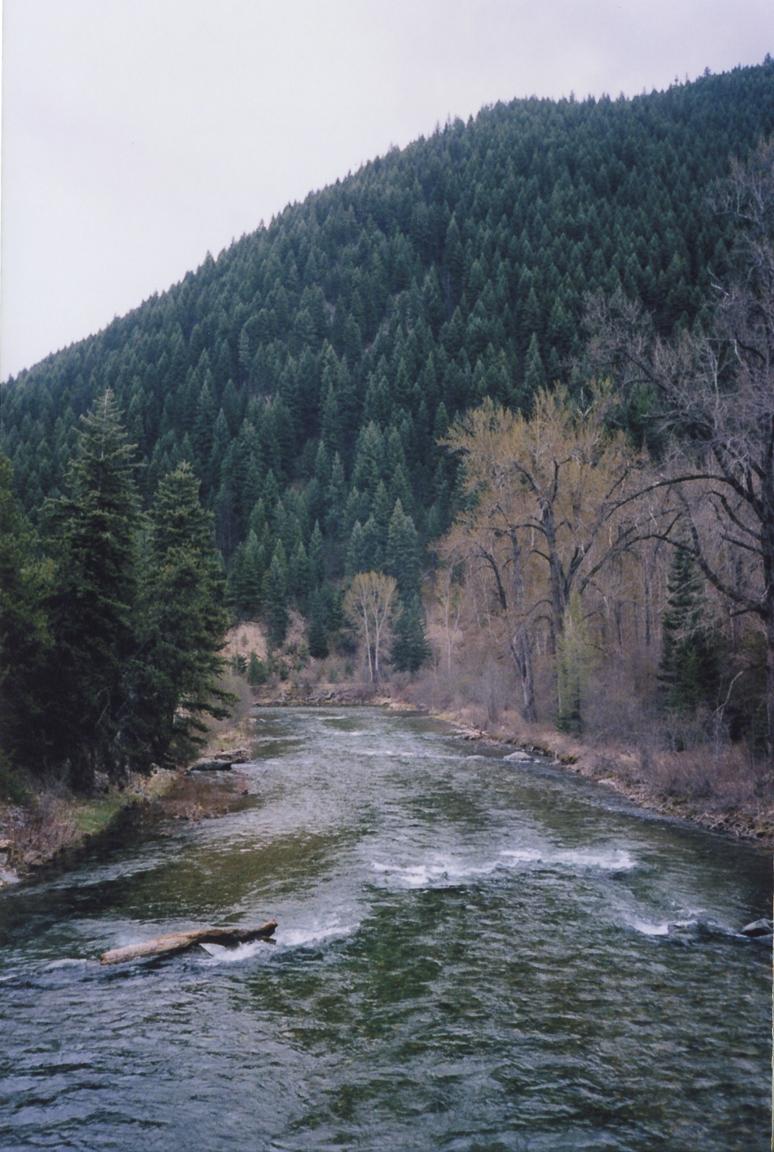 kodak portra 160 film 35mm texas montana america yall pawlowski olympus 26