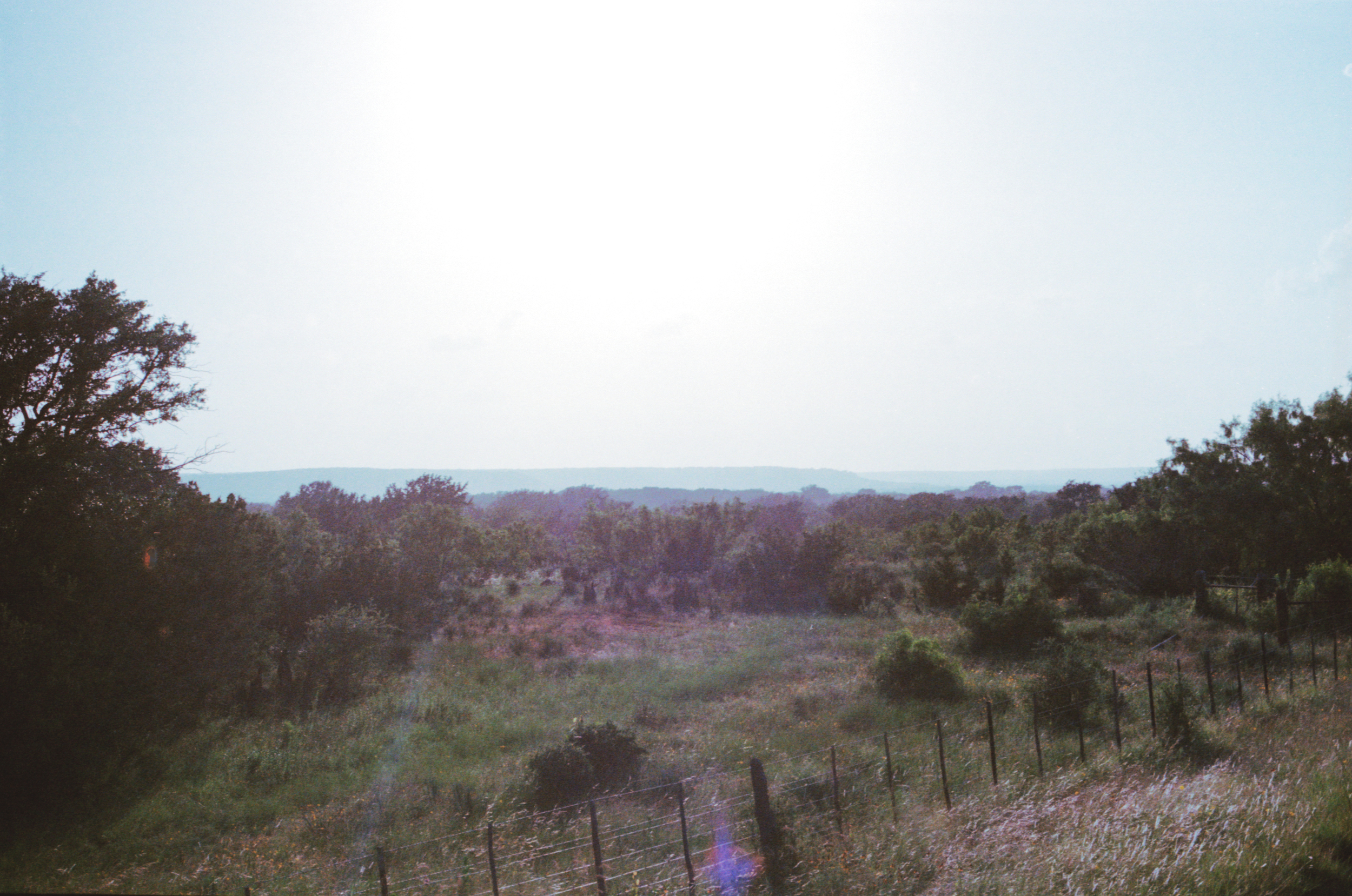 texas llano trees 35mm film america pawlowski whatley camping camp river