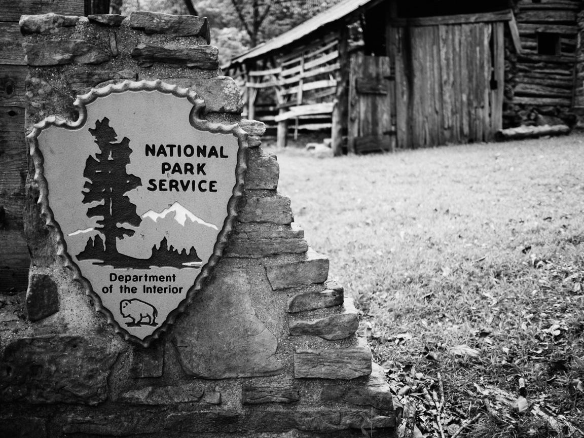 arkansas oklahoma bison camp camping ozarks truck dog america yall pawlowski vsco olympus omd em5 nps
