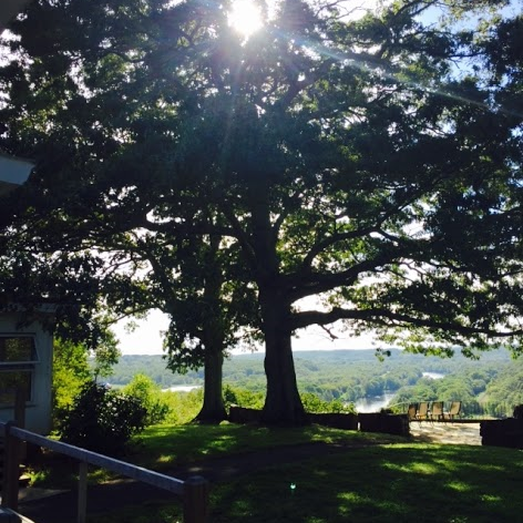yard, veranda, and view, in delightful afternoon splendor. next year, come see for yourself!