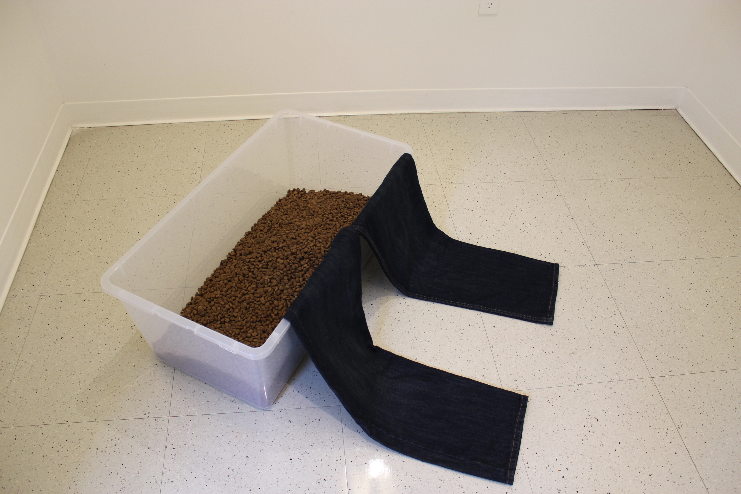 TAIL BETWEEN THE LEGS  Plastic Container, Dog Food, Jeans. Dimensions Variable 2014