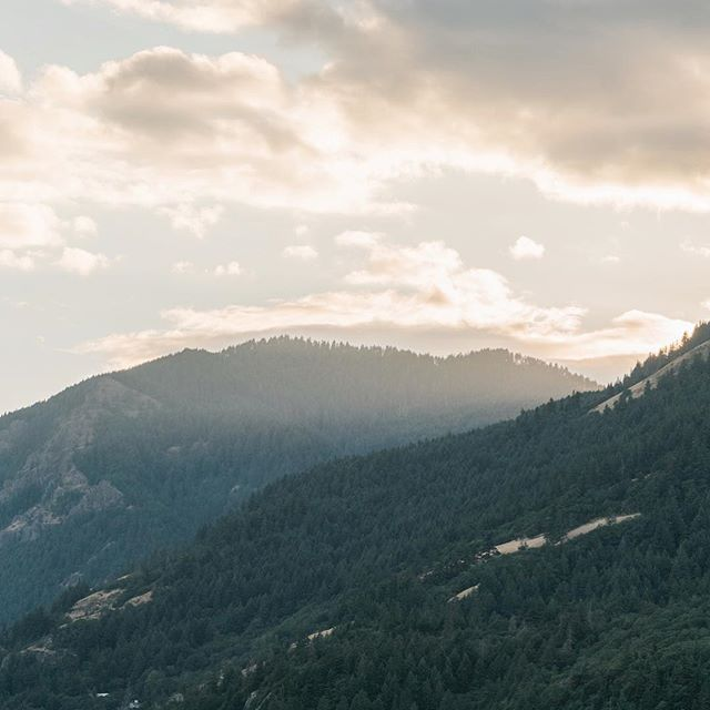 There is something magical about evenings in the Gorge. Especially when the light slices through the hillsides. ⁣⠀ ⁣⠀ ⠀⁣⠀ #gorgewedding #portlandweddingvideographer #skamanialodge #skamanialodgewedding #washingtonelopementphotographer #washingtonweddingphotographer #washingtonengagement #bigsurphotographer #socalweddingphotographer #dirtybootandmessyhair #loversgettinglost #wildhairandhappyhearts #oarsandbeanies #adventurouslovestories #lookslikefilm #muchlove_ig #photobugcommunity #keepitreal #engagementphotographer #weddingphotographer #oregonphotographer #idahoengagementphotographer #coloradoengagementphotographer⁣⠀ ⁣