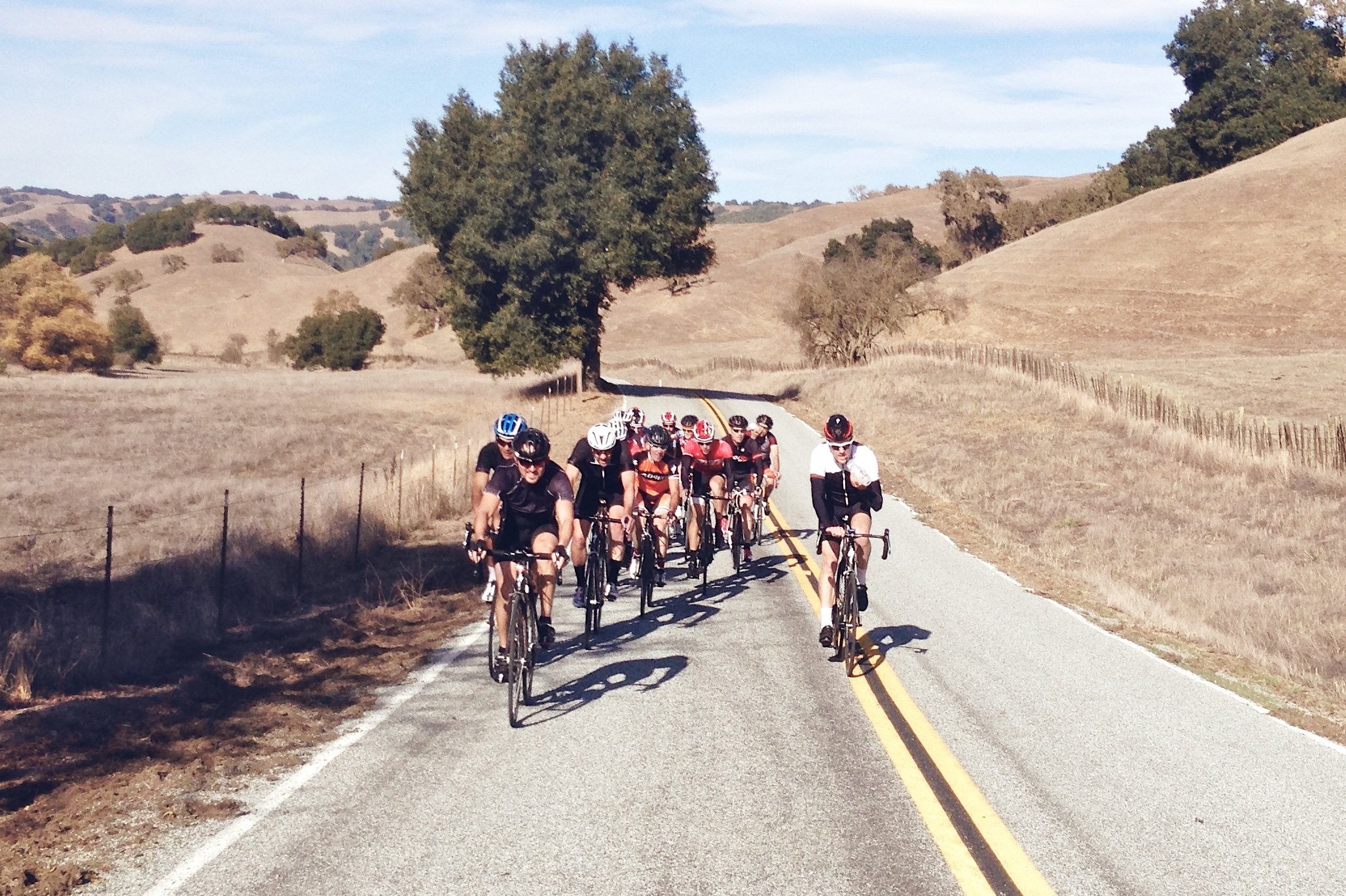 The Specialized Thanksgiving lunch ride crew.