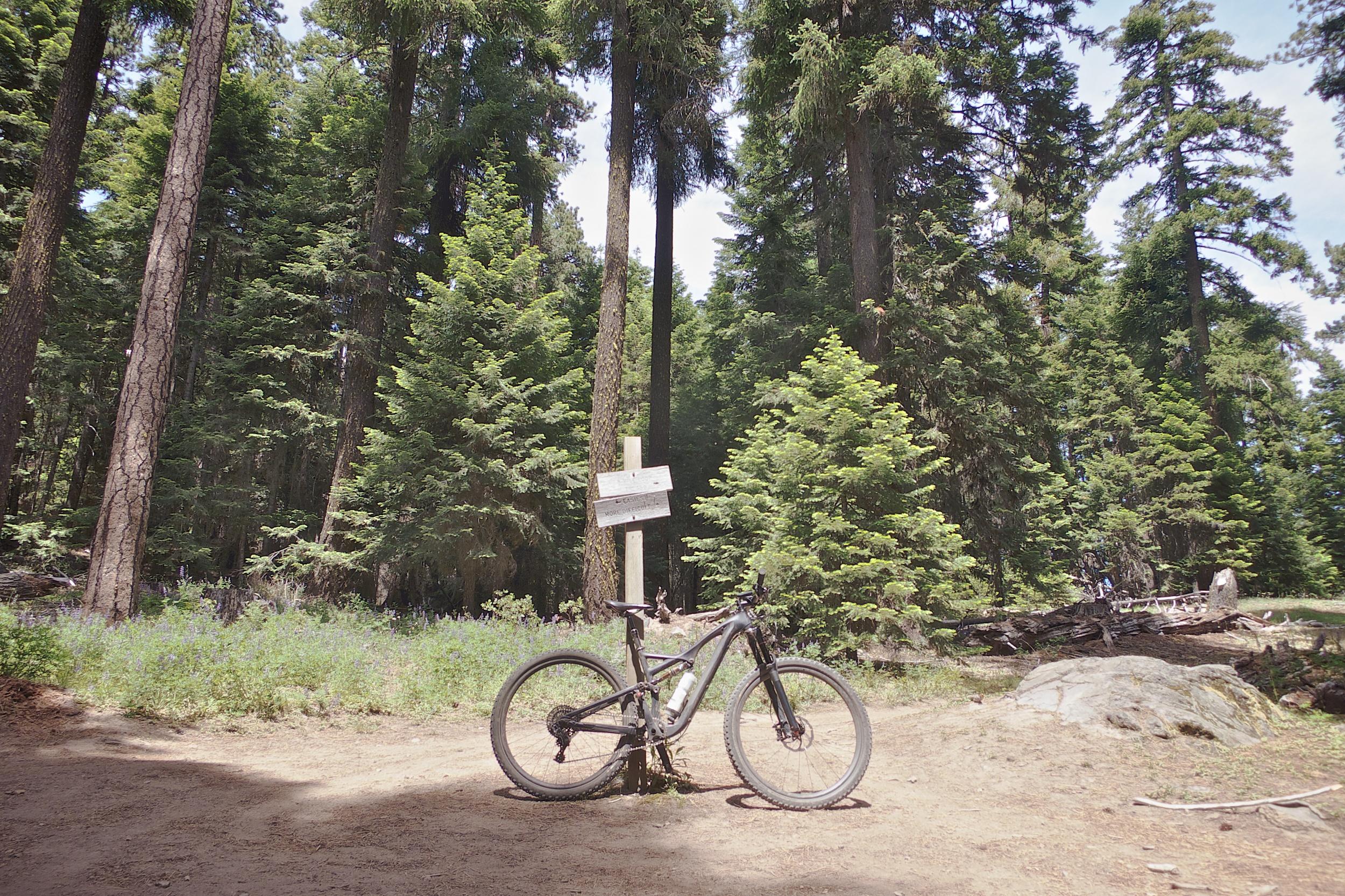 My Stumpjumper FSR tamed the trails of Mt. Hood like a boss.