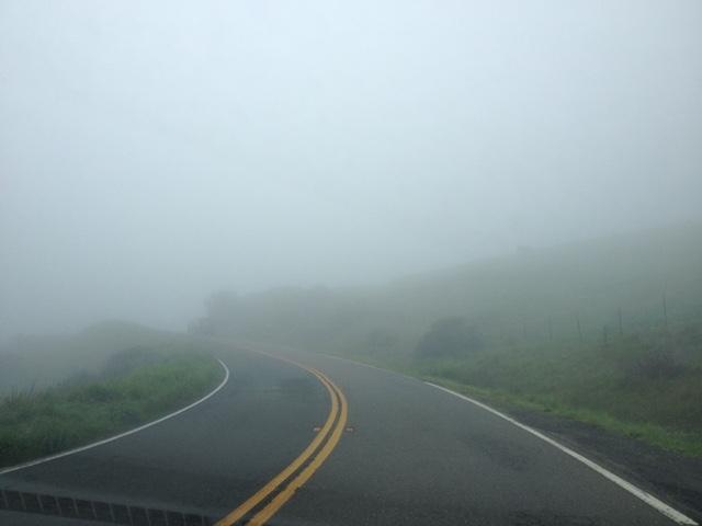 Fog/Road