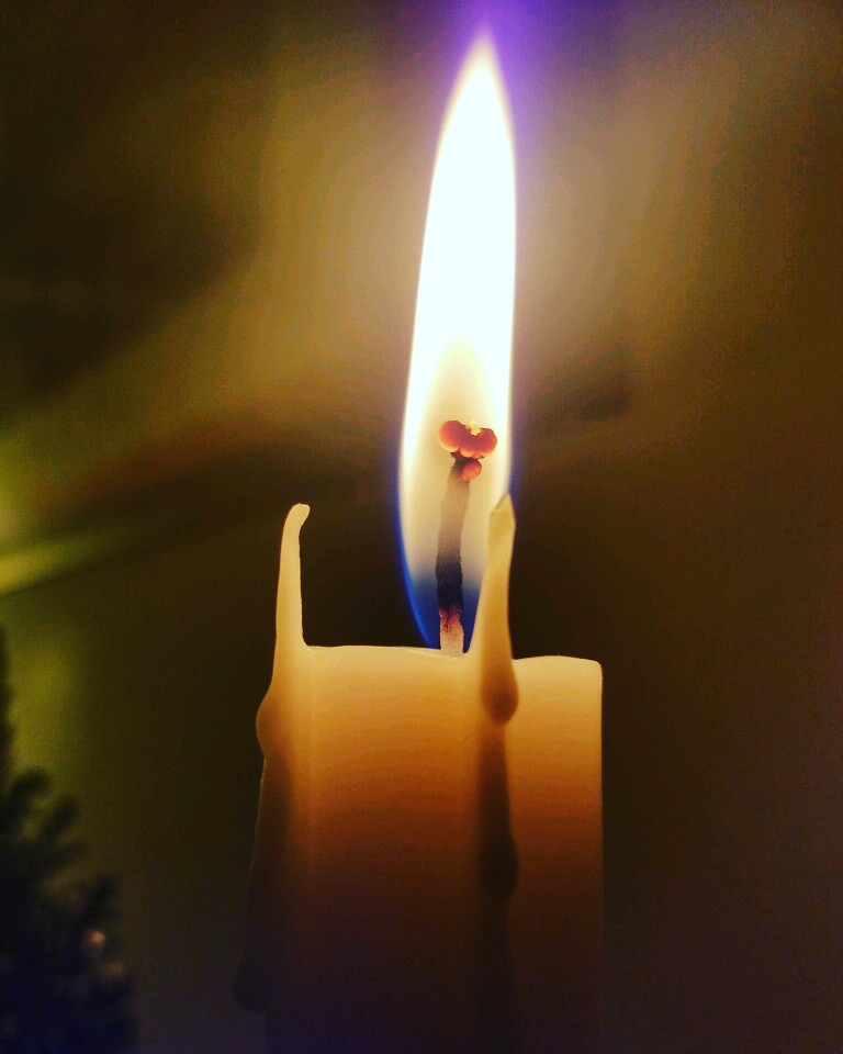 Fly Candle