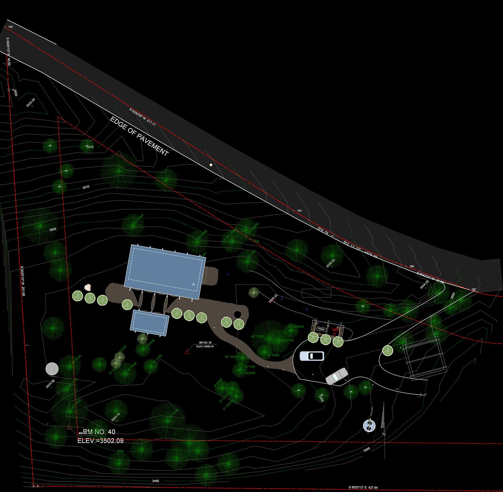 Pioneer Site DWG.jpg