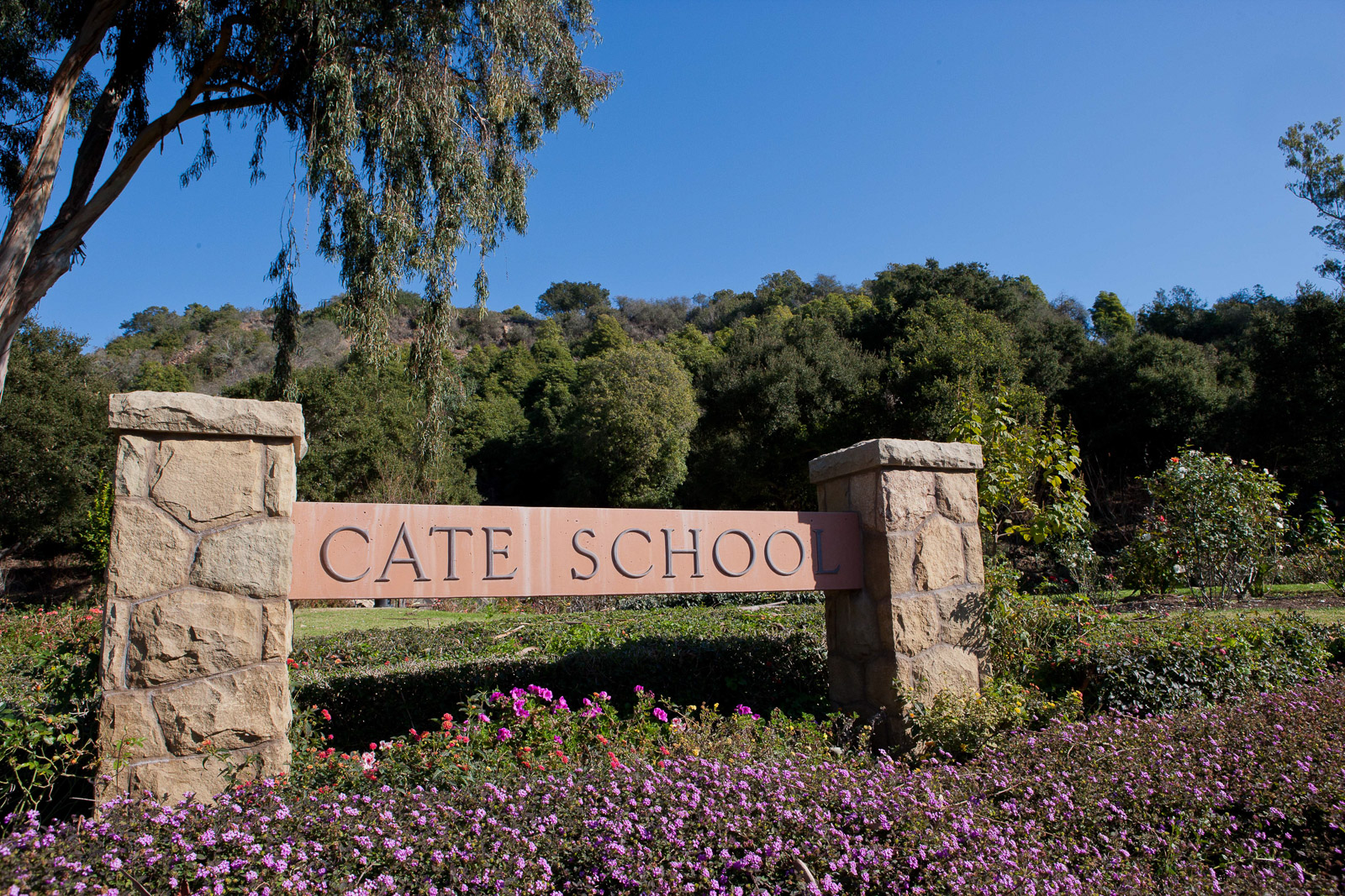 CateSchool-0125.jpg