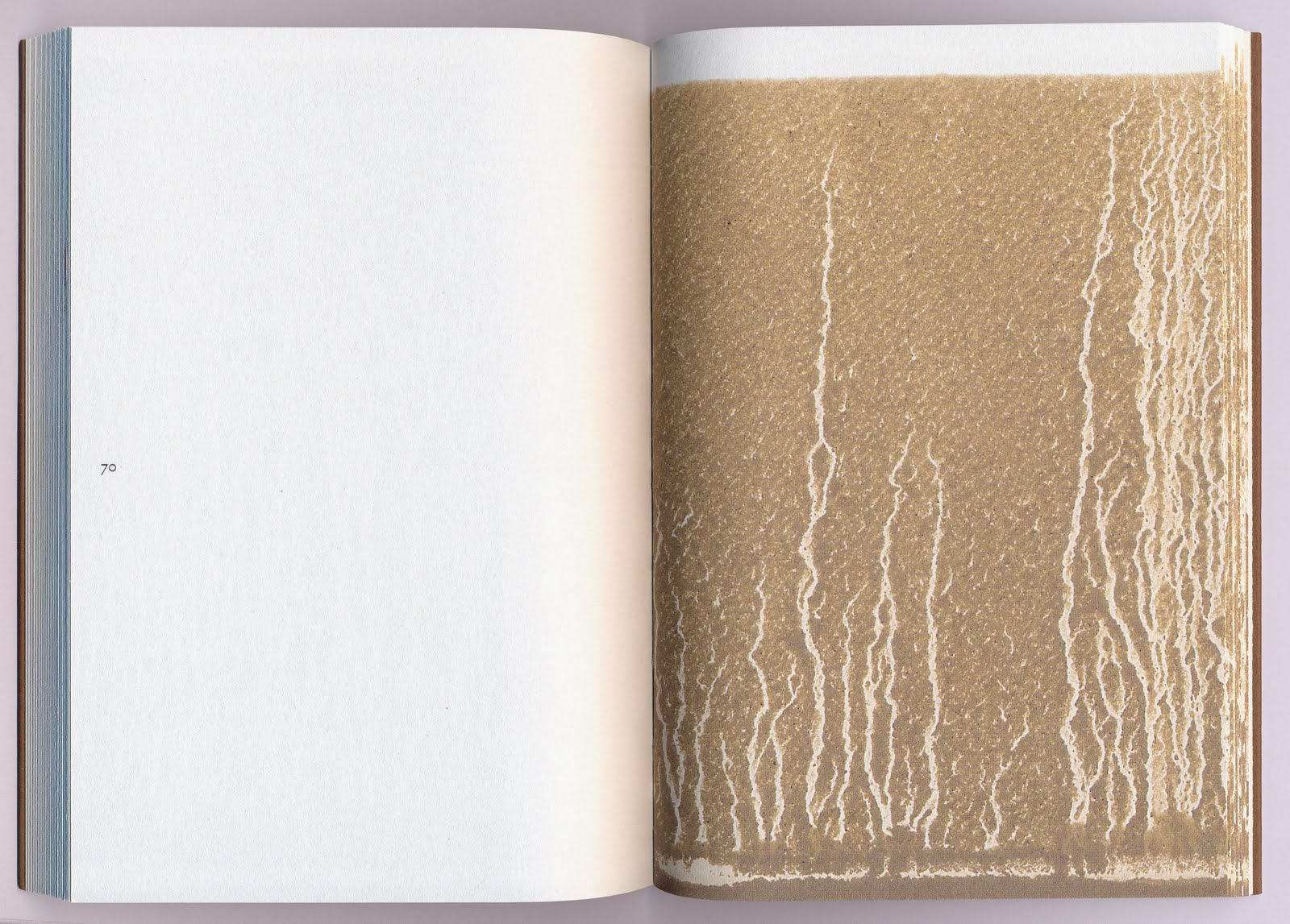 Richard Long,  Gravity  (Ivorypress, 2010)
